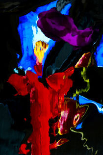 Colorful Distortion 234  by Thom Gourley