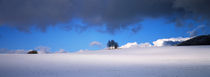 Blau-weisse Winterlandschaft von Intensivelight Panorama-Edition