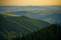 Carpathian Mountains von Alex Gvozditskiy