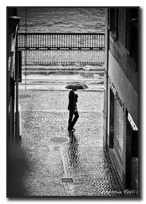 Mai-Regen by Chris Rüfli Photography
