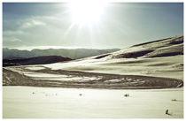 Utah#9 by Bryony Shearmur