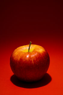 Apple 157 by Thom Gourley