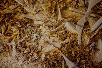 Sawdust von Peter  Crumpton