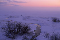 After Sunset in the Tundra von Wolfgang Kaehler