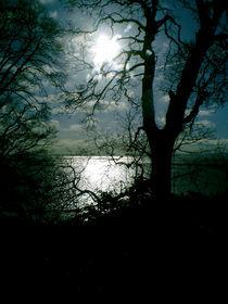 Shadows von Peter Valente