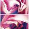 Spring-bluemoonroses-c-sybillesterk