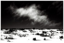 Utah #16 by Bryony Shearmur