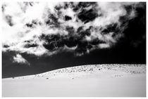 Utah #15 von Bryony Shearmur