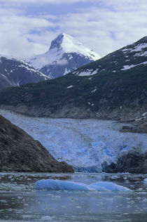 Sawyer Glacier, Tracy Arm, Alaska by Wolfgang Kaehler