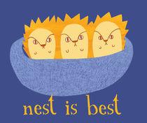 Nest is Best von Maeg Yosef