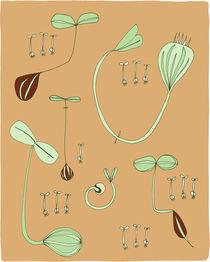 Seedlings by Maeg Yosef