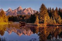 Moose Teton by Leland Howard
