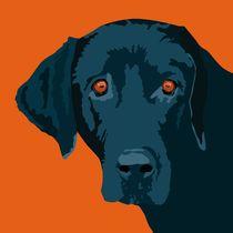Blue dog von sebastiano ranchetti