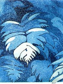 Blue Mamaku Tree Fern Etching by Patricia Howitt