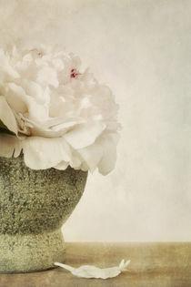 fleur parfumé by Priska  Wettstein