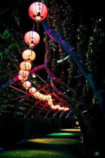 lanterns 2 by Monique Keen