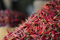 spicy von emanuele molinari