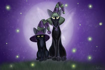 Magic and Mischief von Ash Evans