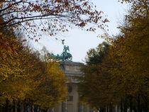 Quadriga zwischen Herbstlaub by minnewater