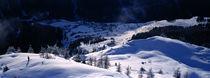 Skier  von Ross Woodhall