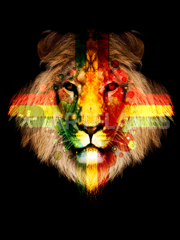quotrasta lionquot picture art prints and posters by jay