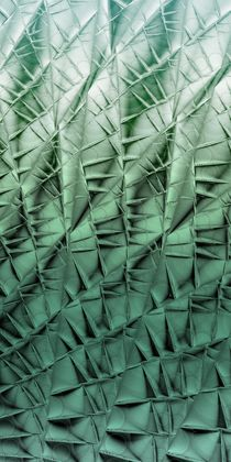 Cactus wall von Yvonne Fido