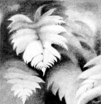 Mamaku Tree Fern Pencil by Patricia Howitt