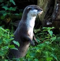 Mother Otter von Peter Valente