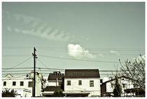 I Love LA #8 by Bryony Shearmur