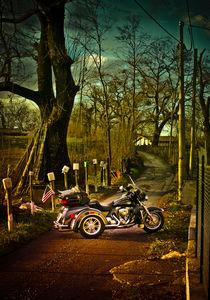 Trike by Luca Mattioli