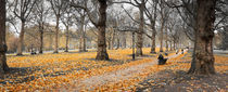 London, Green Park in Autumn by Alan Copson