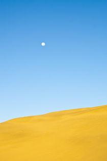 Full moon over a sand dune by Ricardo Ribas