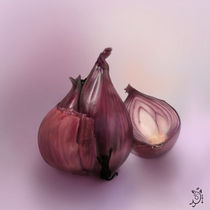 Onion by Magdalena Saramak