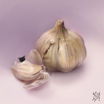 Garlic by Magdalena Saramak