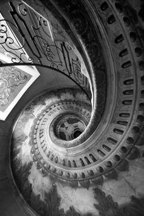 the winding staircase by dayle ann  clavin