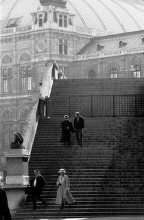 The steps near the Vienna Opera by dayle ann  clavin