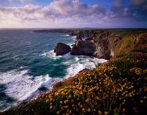 Carnewas and Bedruthan Steps, Cornwall, England. von Craig Joiner