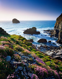 Backways Cove, Cornwall, England. by Craig Joiner