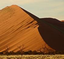 namibia landscape by james smit