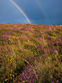 Selworthy Beacon Rainbows by Craig Joiner