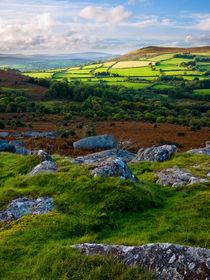 Hayne Down, Dartmoor by Craig Joiner