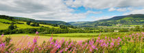 The Usk Valley, Crickhowell by Craig Joiner