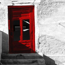 red door by james smit