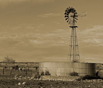 africa  agriculture by james smit