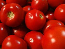 tomato von james smit