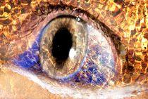 Bernsteinwasser Auge von tinadefortunata