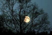 der Mond by tinadefortunata