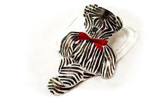 Zebra Bär von tinadefortunata