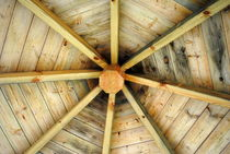Dach by tinadefortunata