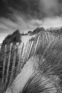 Sand Dunes at Northam Burrows by Craig Joiner